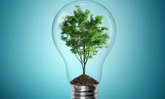 emprendimiento-arbol-ideas-negocio